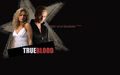 eric and sookie - sookie-and-eric wallpaper