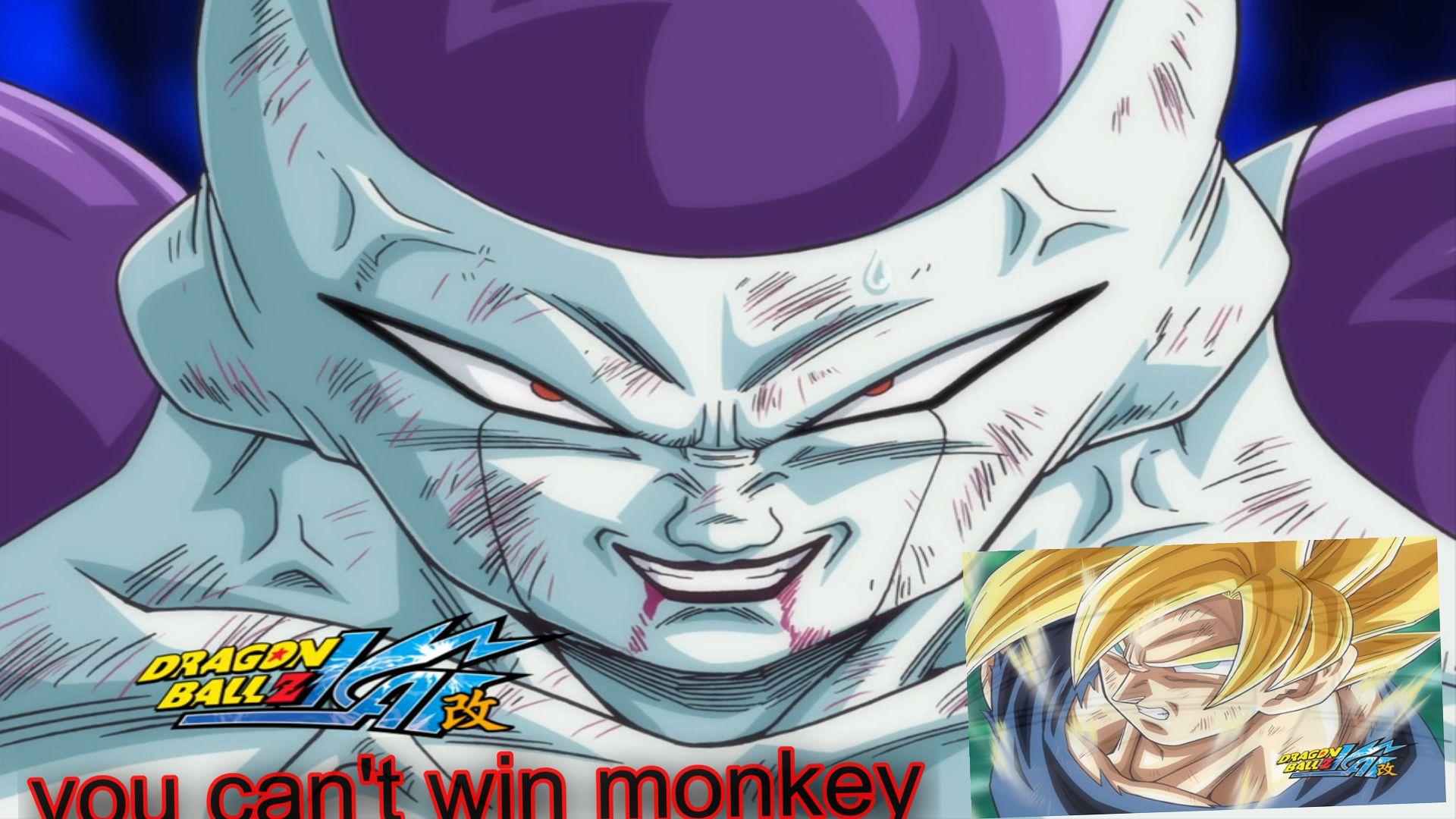 Dragon Ball z Goku vs Frieza Dragon Ball z Frieza vs Goku