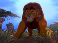 lion king fight  - the-lion-king-2-simbas-pride wallpaper