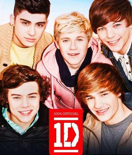 1D = Heartthrobs (Enternal 爱情 4 1D) 100% Official 2012 Annual!!! 100% Real ♥