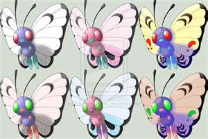 All Shiny Forms Of Butterfree