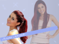 Ariana Grande wallpaper - ariana-grande wallpaper
