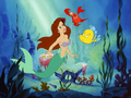 Ariel - Brown hair - the-little-mermaid wallpaper