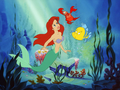Ariel, Sebastian and Flounder - the-little-mermaid wallpaper