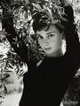 Audrey Hepburn: 1929-1993