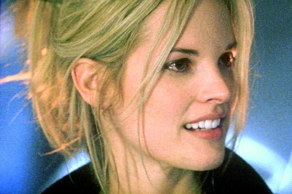 Bridgette Wilson Net Worth