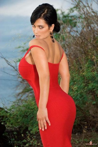 Denise Milani images Denise Milani - Red Dress wallpaper and background photos