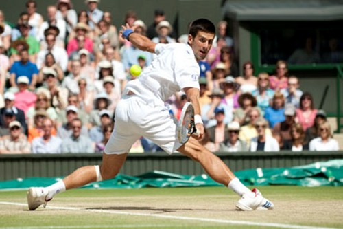 Djokovic won Wimbledon his پچھواڑے, گدا !!!