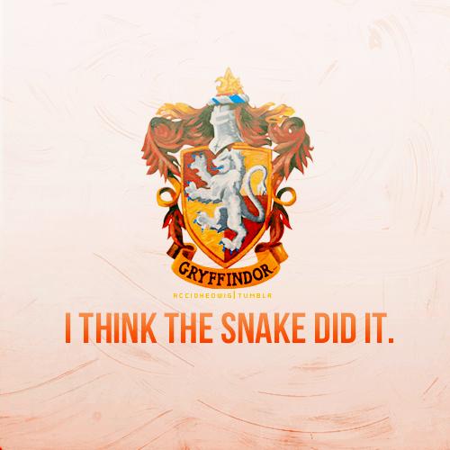 fã Art - Gryffindor
