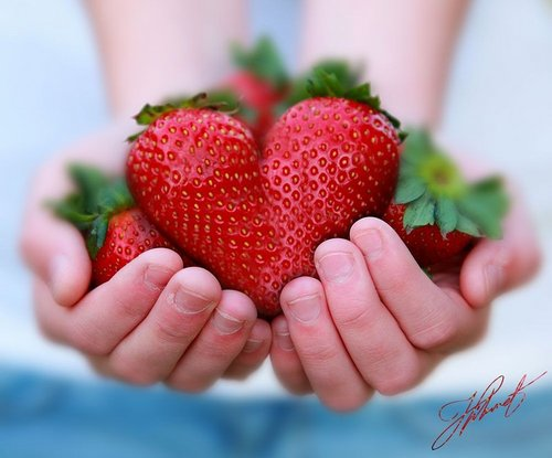 Delicious Recipes wallpaper containing a strawberry, a virginia strawberry, and a beach strawberry titled Fruits