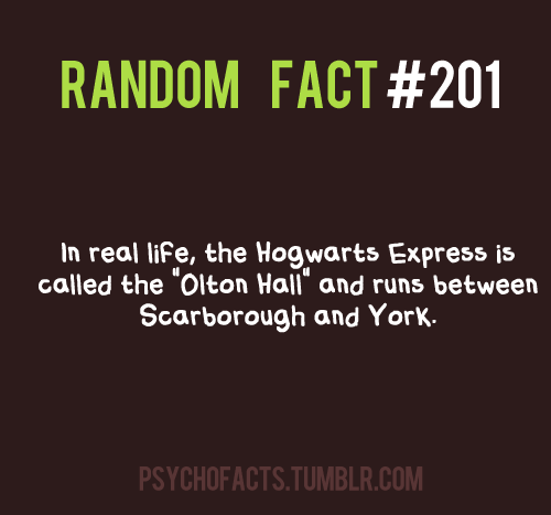 Harry Potter Vs. Twilight wallpaper called HP facts