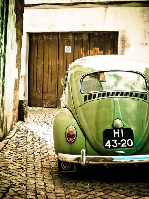beetle volkswagen beetle photo  fanpop