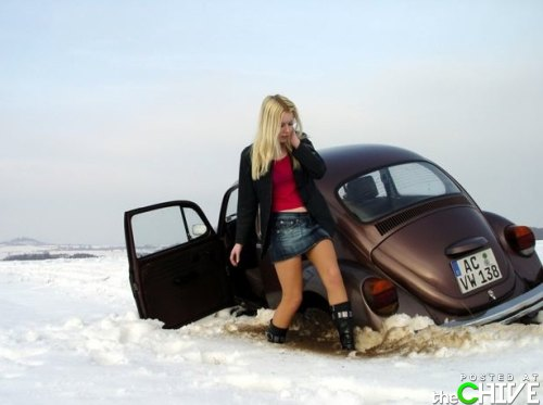 I ♥ beetle