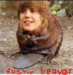Justin Beaver - schools-are-awesome icon