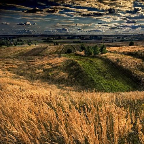 Landscape...