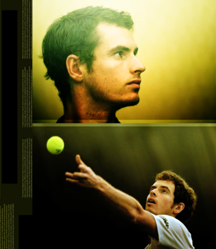 Murray. - andy-murray Fan Art