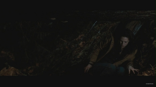 New Moon Deleted Scene: Waking in the Woods - new-moon-movie Screencap