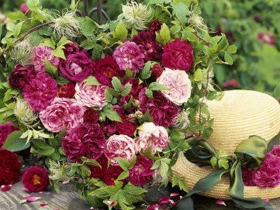 Roses...