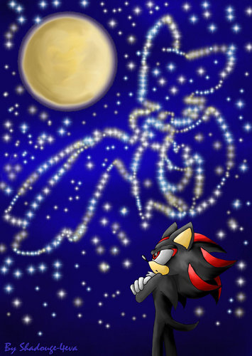 Shadow: Rouge pleas 4 give me i luv u (wishing)