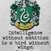 Slytherin - hogwarts-house-rivalry icon