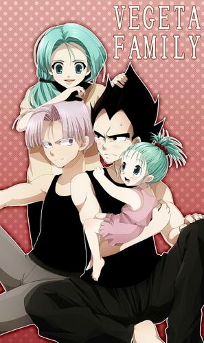 Vegeta Family