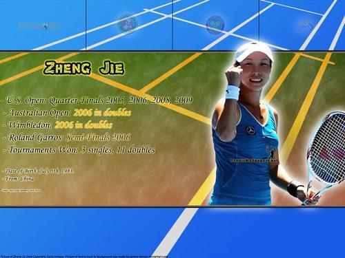 Zheng Jie Titles