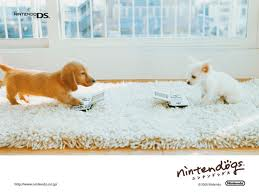 Wallpaper - nintendogs Photo