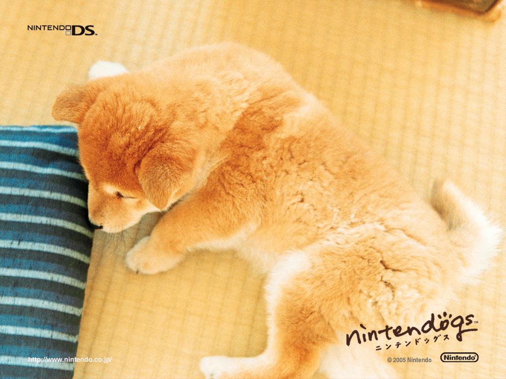 Nintendogs Wallpaper (23496585)