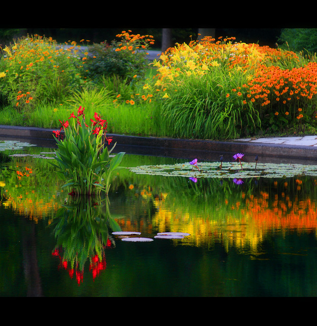 Beautiful Nature Images Water Wallpaper And Background Photos