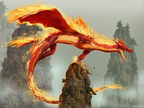 火災, 火