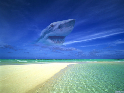 Water wallpaper entitled  mysterious beach