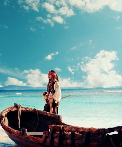 Beautiful Captain Sparrow