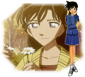Dc couples - detective-conan-love-stories photo