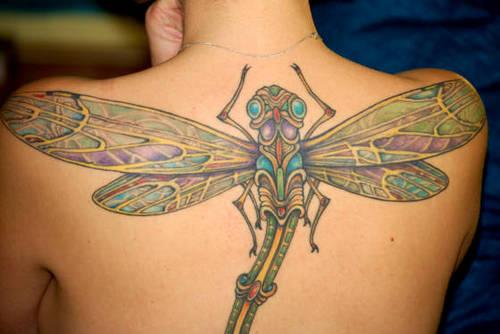 Dragonfly tatouages