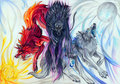 Fan Arts of Wolves