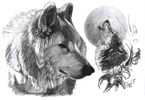 fan Arts of loups