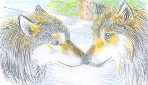 Fan Arts of Wolves