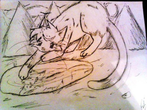 Graystripe and silverstream~just out or reach