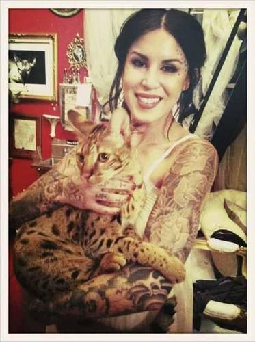 Kat Von D wallpaper containing an egyptian cat, a tabby, and a tabby called KAT