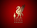 LFC Wallpaper - liverpool-fc wallpaper