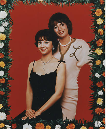Laverne & Shirley 壁纸 with a bridesmaid and a 晚餐 dress entitled Laverne and Shirley