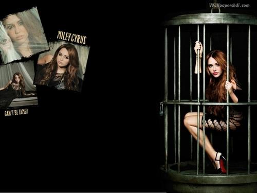 Miley CBT <3