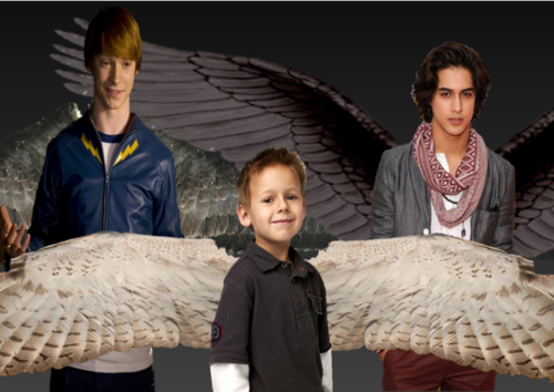 Maximum Ride wallpaper titled My Maximum Ride Cast ~ Boys