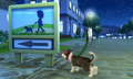My nintendog pictures - nintendogs screencap