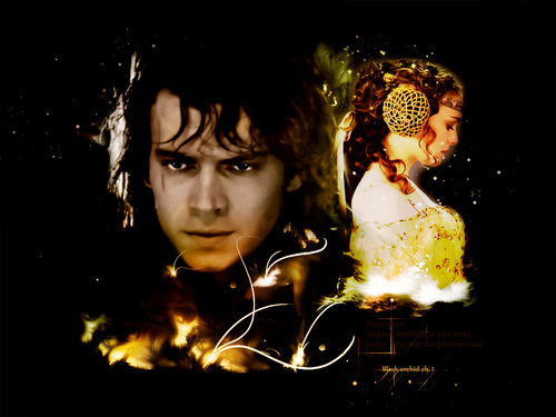 随意 Anakin and Padme