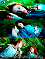 Random Twilight Pics - twilight-series photo
