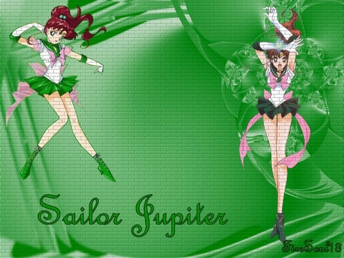 Sailor Moon karatasi la kupamba ukuta with a camellia, a japanese apricot, and a bouquet entitled Sailor Jupiter