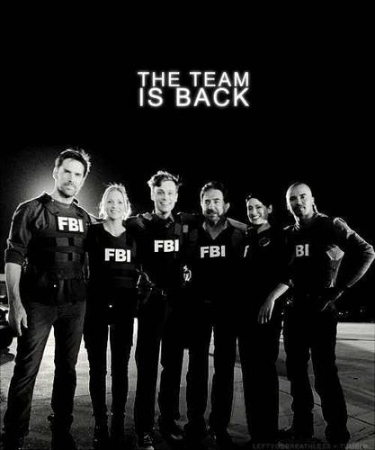 Criminal Minds wallpaper probably with a green beret called The Team Is Back