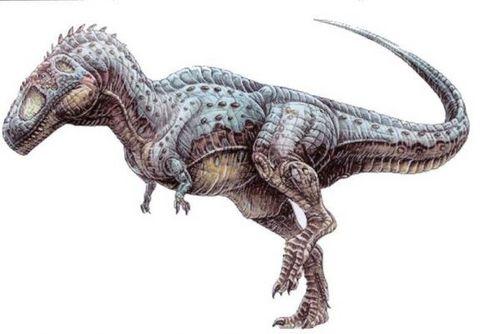 dinosaurus wallpaper containing a triceratops entitled Tyrannotitan