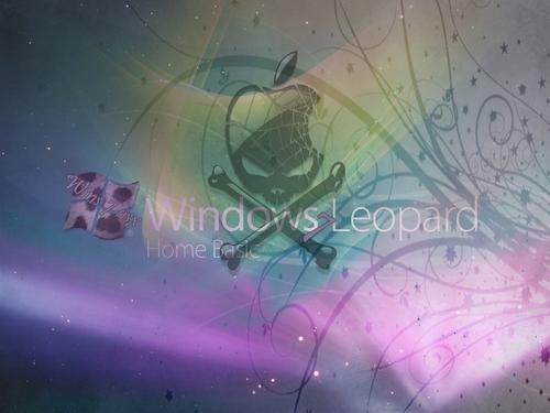 Wins 7 OSX 바탕화면